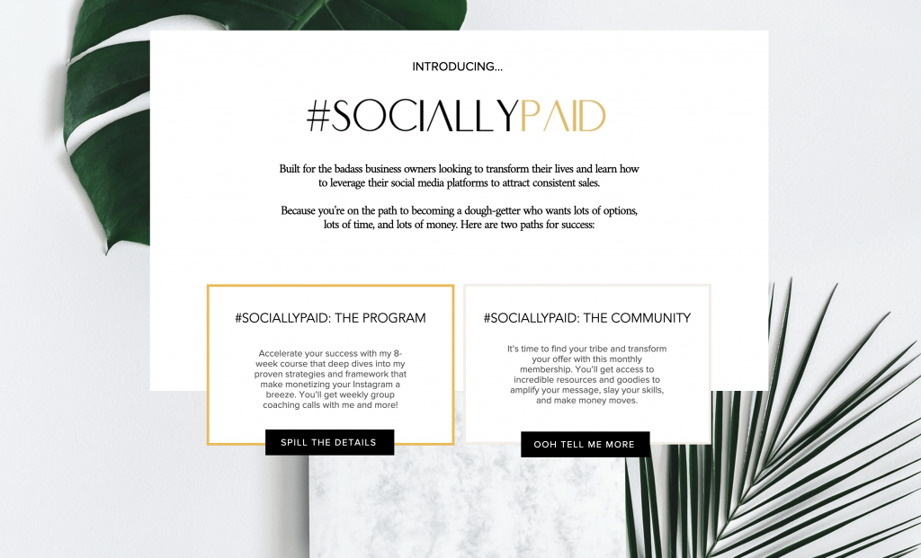 Ariel Carr - SociallyPaid Sales Page - Program and Community